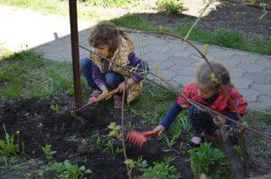 Посадка семян детьми